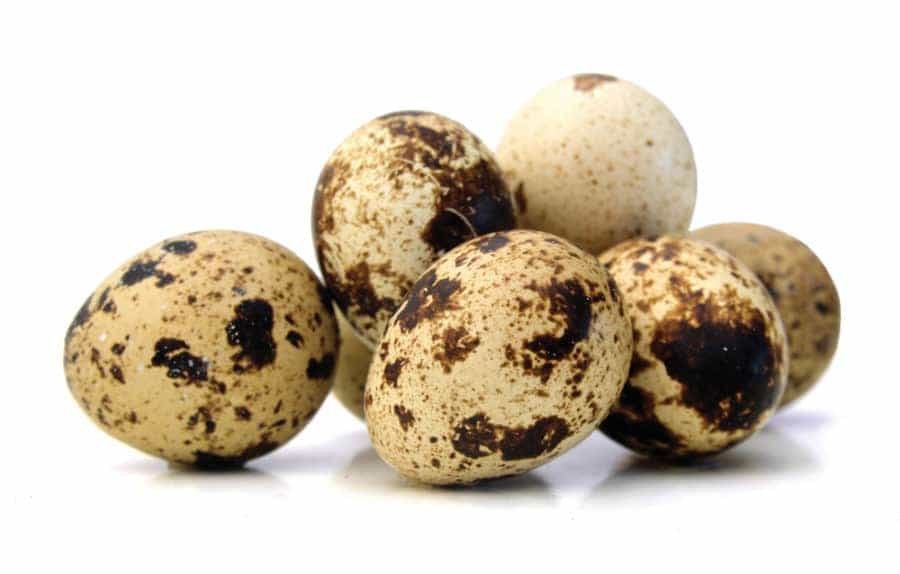 A picture of 7 quail eggs